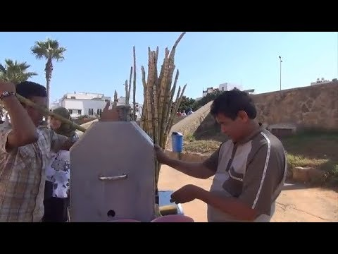 Marokko, Rabatt, die Kasbah des Oudaia,die Reise Erfahrungen Familie A&H PANT