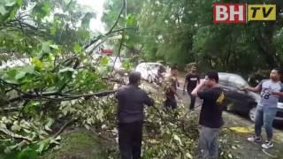 Banjir lumpur, pokok tumbang landa Gombak