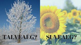 Kas Eesti peaks kehestama suve- või talveaja?