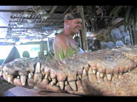 Pocho the crocodile funeral in Costa Rica