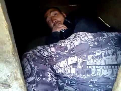 Вася спит в собачьей будке