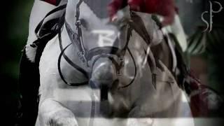 Equestrianism: A Beautiful Strength