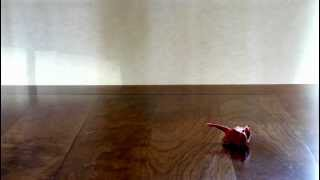 Stop Motion Of Red Origami Cats