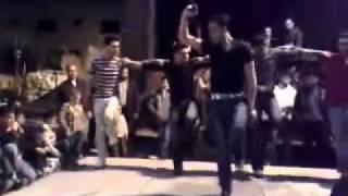 Palestinian Dabke -Ya zarif attul