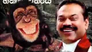 Download fun mahintha s.hany 3Gp Mp4