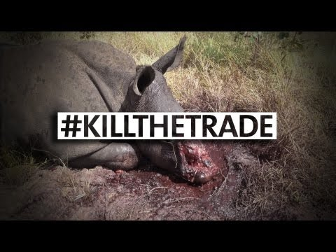 WARNING: The Real Face Of Rhino Poaching