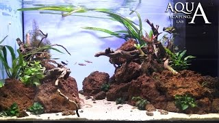 "Aquascaping Lab - Tutorial Natural Aquarium Volcanic rocks ""Red Passion"" (size 80x50x40h 160L)"