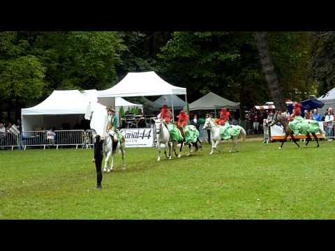 Journées du cheval - Cheneau - Takirou Poney Club - 11-09-2011 Part 2.avi