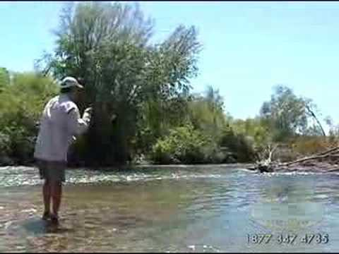 Fly Fishing Lower Canyon South Fork Snake River in Idaho Video