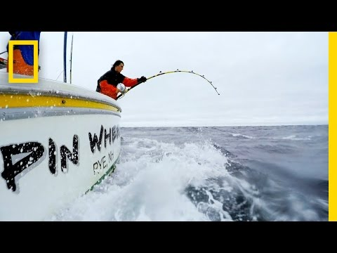 Down and Tight | Wicked Tuna