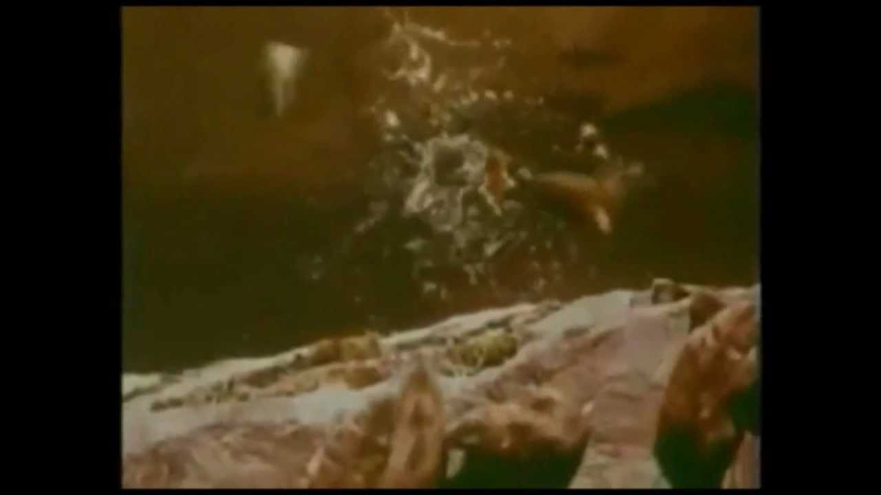 Lemmings Jump Off Cliff - Reptile's Theme - YouTube Obama Lemmings Jumping Off A Cliff