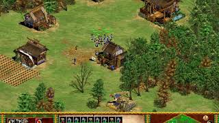 Age of Empires II , wall attack