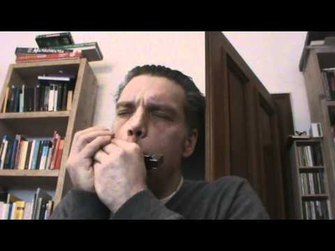 Letter from home (metheney) in the version of jason vieux played on a chromatic harmonica
