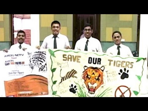World Tiger Day: Art competition