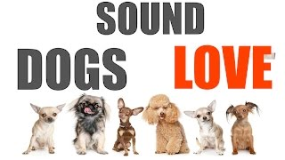 Sound Dogs Love All Time | HQ
