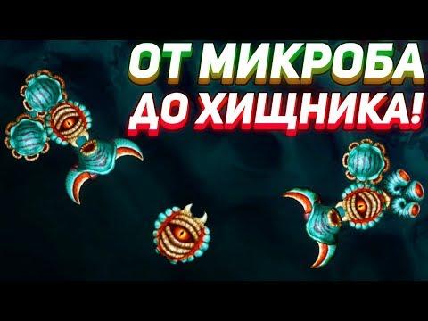 ОТ МИКРОБА ДО ХИЩНИКА! - Sipho
