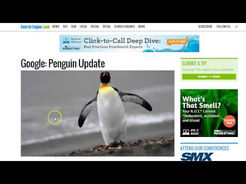 SEO Training Course - Video 15: The Impact of Google Penalties plus Panda and Penguin Search Updates