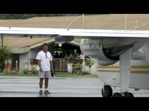 Mammifères marins polynésie mission Remmoa recensement mégafaune marine par observation aérienne