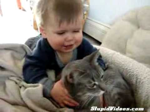 Baby Playing with cat and says Allah Allah isn't it?