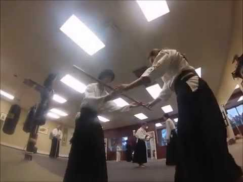 Fishhawk Martial Arts Academy Aikijujutsu Training  June 2014 Image 1