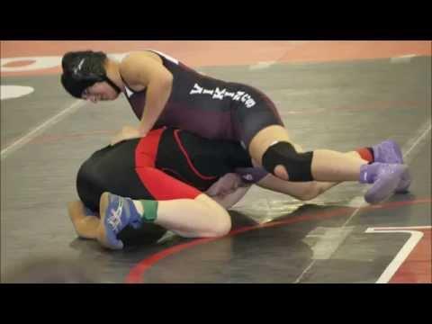 Tennessee High School Wrestling 2014 Season Video