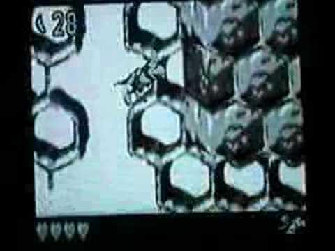 Donkey Kong Land 2 - Parrot Chute Panic video