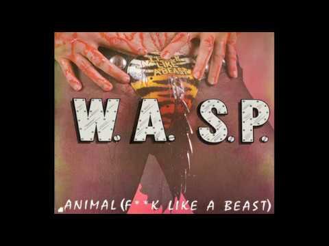 Wasp - Animal