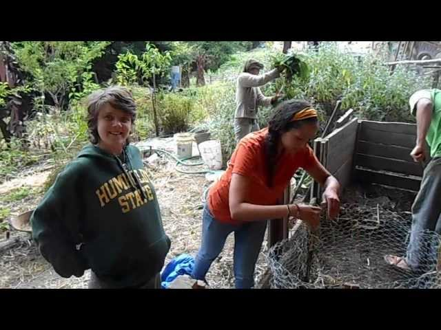 Layering Hot Compost with CCAT Employees