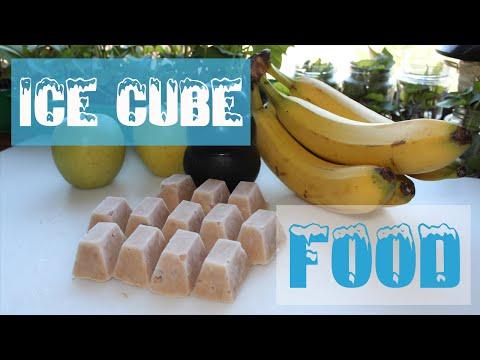 Ice cube food - by Yuki the Akita Inu