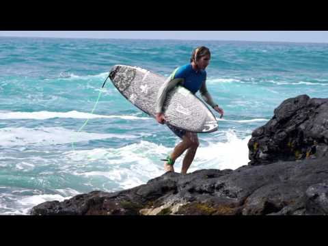 Here & Home | Torrey Meister