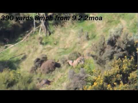 Long range goat shooting compilation NZ!!