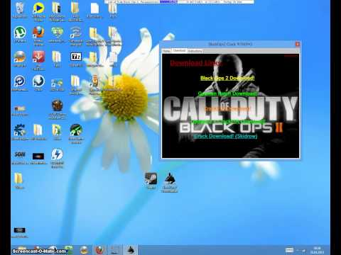 Call of Duty Black Ops 2 kostenlos Downloaden PC)