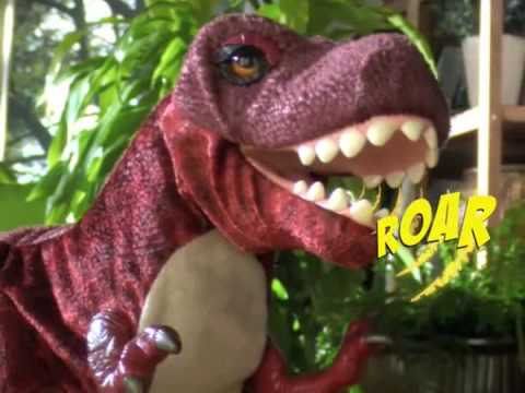 Playskool Kota and Pals Monty T-Rex Review