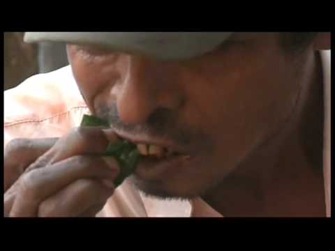 4039li Myanmar-betel Nut Spitting video