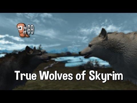 Skyrim Mods #69 - True Wolves of Skyrim