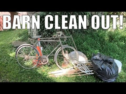 FOUND THIS ON THE SIDE OF THE ROAD! Trash Picking Ep. 178