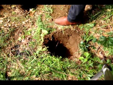 how to make clay soil less boggy