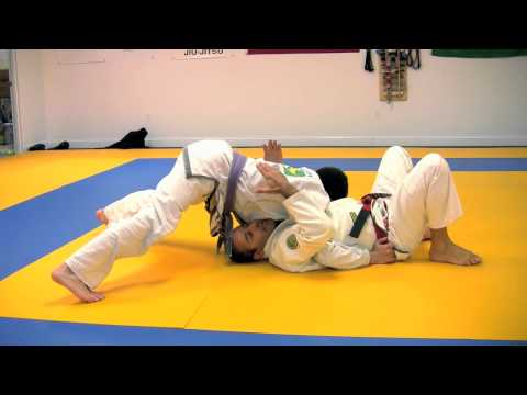 Pedro Sauer Move of the Month: June 2011 Image 1
