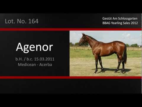 Agenor Lot 164 English video