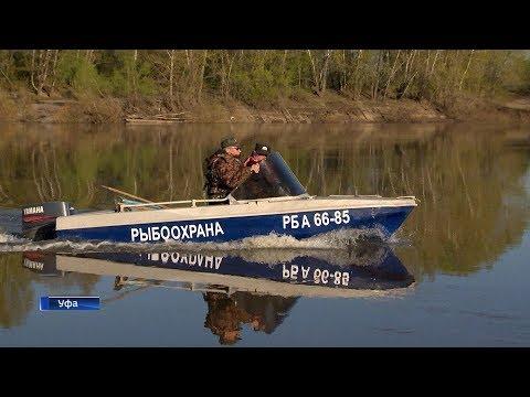 ловля рыбы в башкирии видео