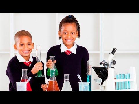 Como Ministrar Aulas Práticas e Aulas Demonstrativas - Aulas em Laboratório