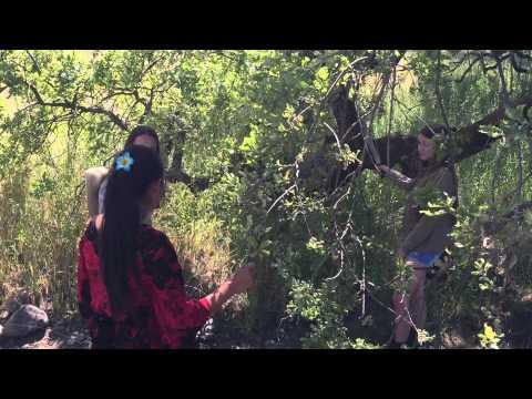 World Geography Video: Surviving Fiji