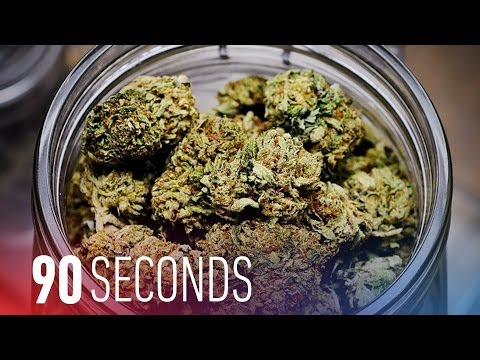 DC decriminalizes weed: 90 Seconds on The Verge