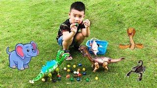 Trò chơi Minh Khoa Đi Săn Các Con Vật - Khủng Long Đẻ Trứng ❤ Min Min TV ❤