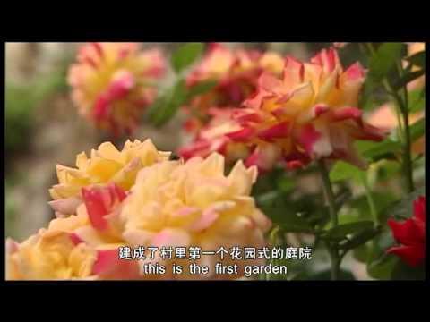 Eunice`s China Dream 一个美国老人的中国梦