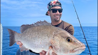 GIANT Mangrove Snapper - Catch And Cook - (Best Recipe) fishing in the ocean!