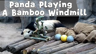 Panda Playing A Bamboo Windmill | iPanda