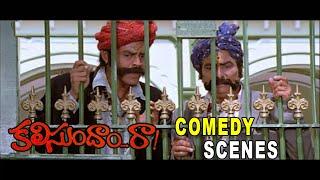 Gopala Gopala Venkatesh,Rallapalli Very Funny Scene | Kalisundam Raa | Venkatesh,Simran