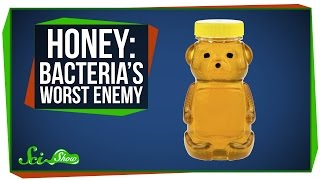 Honey: Bacteria's Worst Enemy