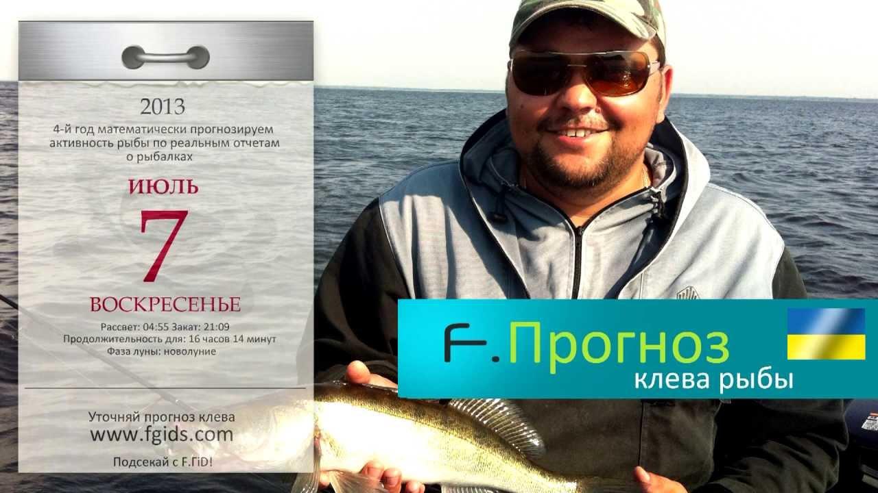 прогноз клева рыбы в гродно на завтра
